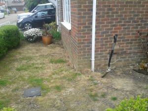 Part of the front garden before we went on holiday to Florida at the beginning of July