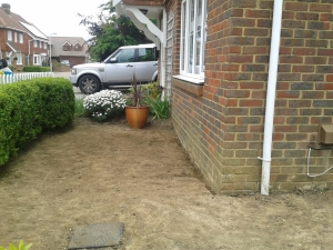 Front garden two weeks after our return from holiday