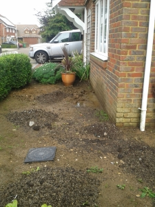 The front garden shortly after my return from Wales with a load of well rotted horse muck ready to be dug in