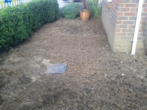 Horse muck dug in and ready to plant. It's now mid September!