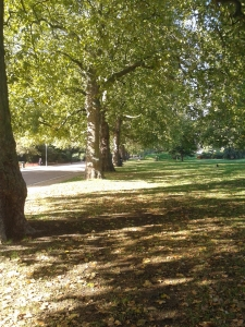 Battersea Park. Looking up towards Albert Gate